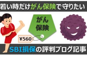 アイキャッチ画像:若い時だけ【がん保険】で守りたい人向け!SBI損保の評判ブログ記事